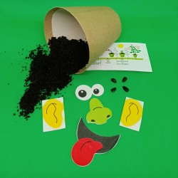 Grow Your Own Sunflower Seed Craft Kit